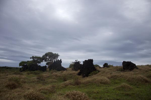 Picture of 'Eua island (Tonga): Cloudy sky over the rock garden on the southeastern coast of 'Eua