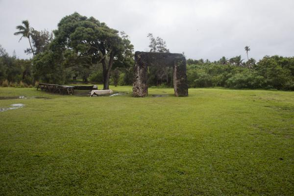 Picture of Frontal view of the trilithon with its grassy (and muddy) surroundingsNiutoua - Tonga