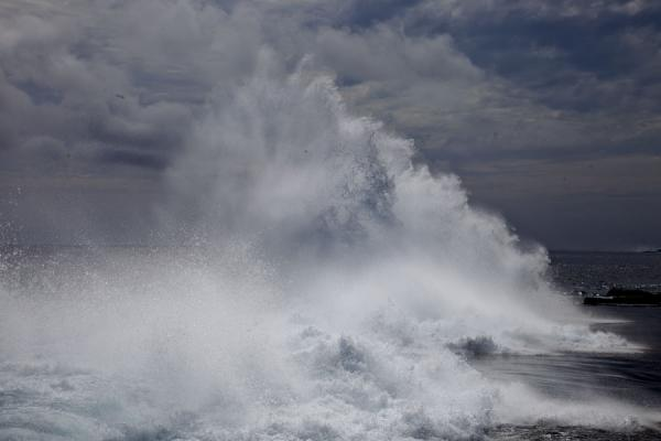 Water spray reaching high in the sky after the waves break on the coral rock of the coast | Bucchi di Mapu a Vaea | Tonga