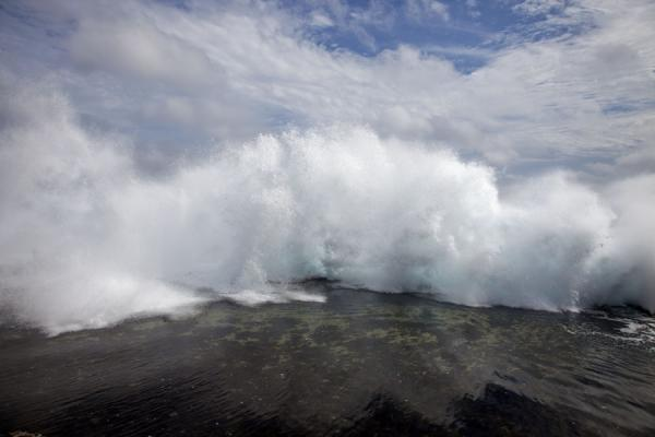 Wall of water thundering over the coral rock bed | Mapu a Vaea Blowholes | Tonga