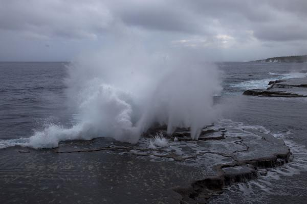 Water spouting high into the air forced by the waves and high tide | Mapu a Vaea Blowholes | Tonga