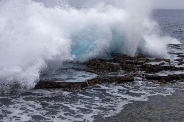 Foto de The force of the sea is clearly visible in this huge wave crashing on the coralEspiráculos de Mapu a Vaea - Tonga