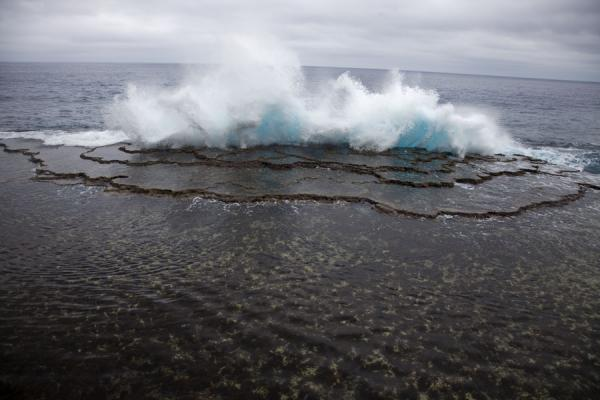 Wave hitting the coral bed with pool of tranquil water | Mapu a Vaea Blowholes | Tonga