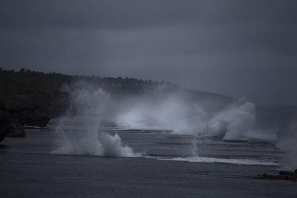 Row of fountains and waves crashing on the shore | Mapu a Vaea Blowholes | Tonga