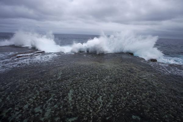 Foto de Wave sent into the air at the coral coast near HoumaEspiráculos de Mapu a Vaea - Tonga