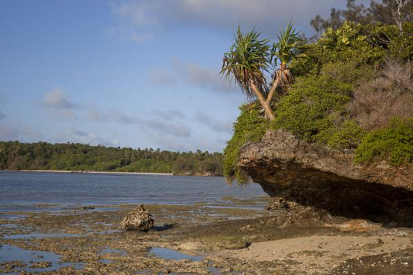 Picture of Ofu island (Tonga): The reefs around the island are partly dry during low tide