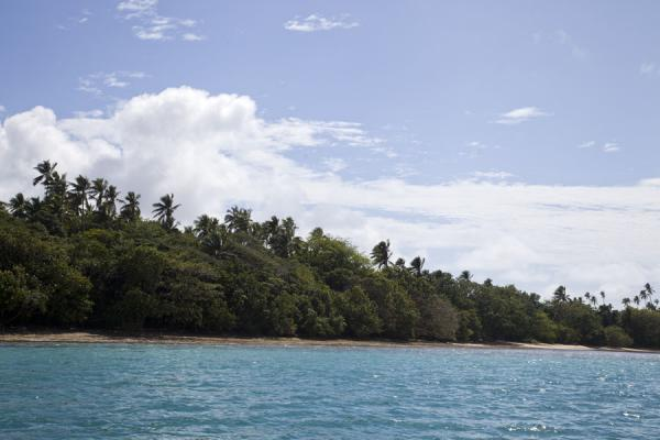 Picture of Ofu island (Tonga): Ofu island is largely covered by trees