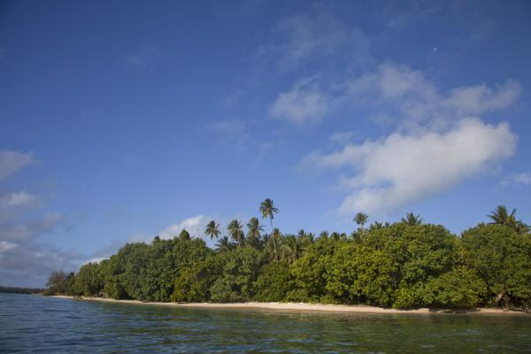 Picture of Ofu island (Tonga): View of Ofu island with trees and beaches