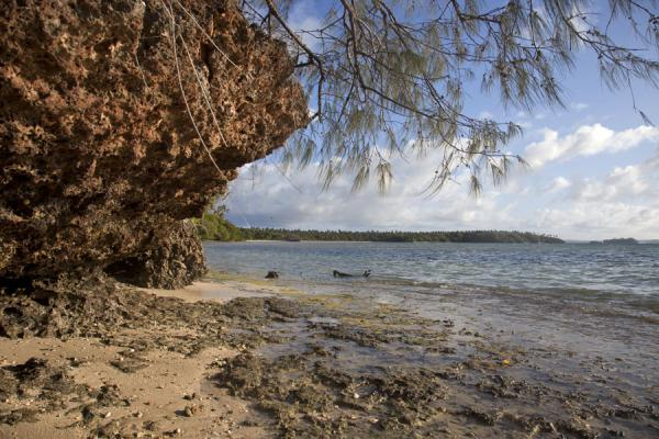 Picture of Ofu island (Tonga): View of the eastern part of Ofu island at low tide
