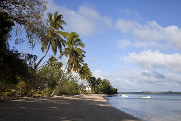 Picture of Ofu island (Tonga): Early morning light on the western side of Ofu island