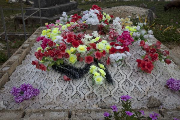 Picture of Tongan cemeteries