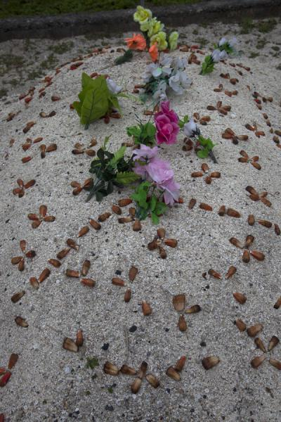 Picture of Tongan cemeteries (Tonga): Grave covered with sand, seashells and fake flowers