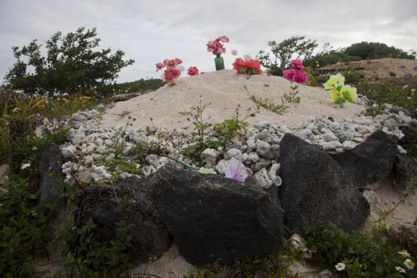 Picture of Tongan cemeteries (Tonga): Grave on Vava'u island with coral, sand, sea shells and flowers