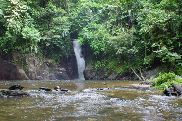 Picture of Setting for a waterfallParia Bay - Trinidad & Tobago