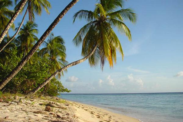 Beach at Pigeon Point | Tobago Beaches | Trinidad & Tobago