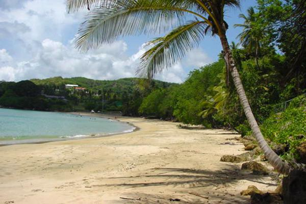 Mount Irvine beach | Tobago Beaches | Trinidad & Tobago