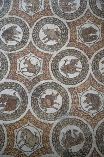 Detail of a large mosaic depicting the astrological signs in the Bardo Museum | Bardo National Museum | Tunisia