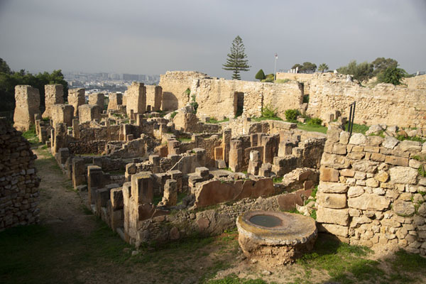 Overview of the Punic quarter of Carthage - 突尼西亚