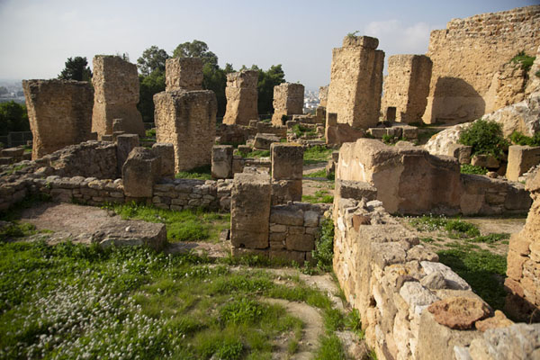 Foto di The Punic quarter of Carthage with Roman-era wall in the backgroundCartagine - Tunisia