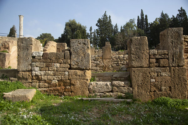 Ruins of houses of the Punic quarter | Punic Carthage | Tunisia