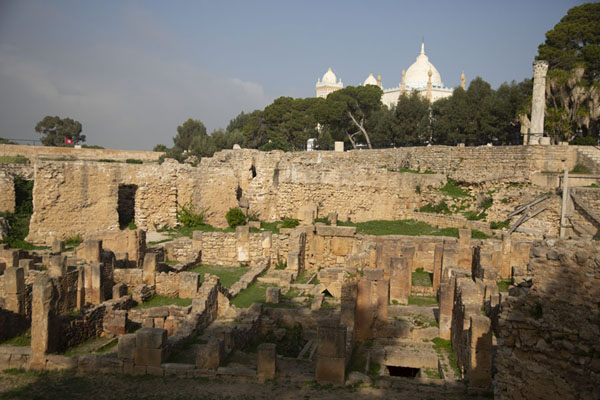 View of the Punic quarter with the cathedral in the background - 突尼西亚
