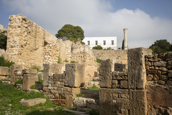 The ruins of the Punic quarter with a Roman column in the background | Punic Carthage | Tunisia