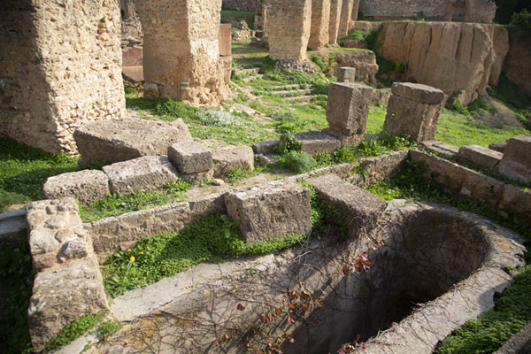 Well and ruins of Punic Carthage with structures built by the Romans | Punic Carthage | Tunisia