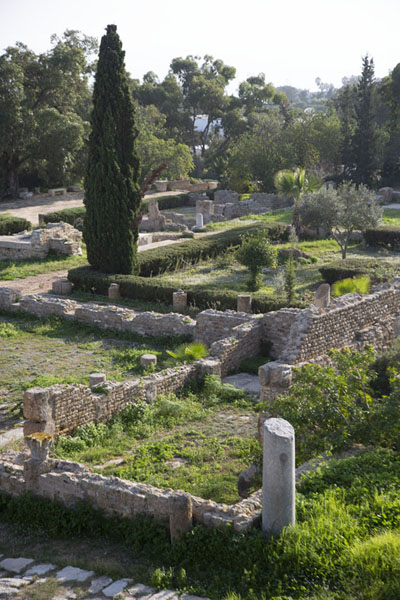 The foundations of the Roman villas can still clearly be seen | Carthage romaine | Tunisie