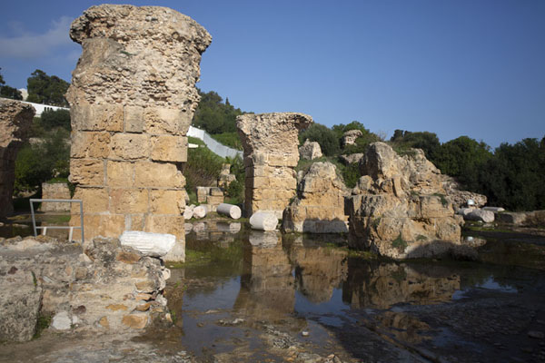 Foto de Ruins of a building of the Antoninus BathsCartago - Túnez