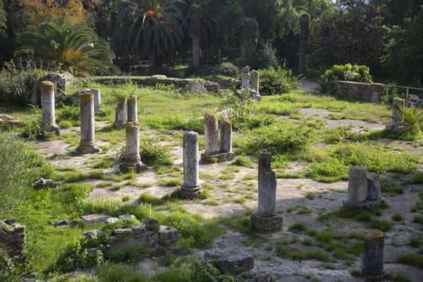 Foto de Row of columns near the Antoninus Baths of CarthageCartago - Túnez