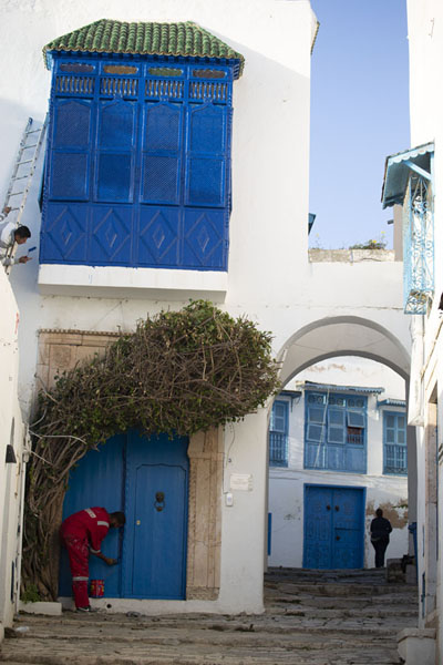 Foto di Man painting a door in Sidi Bou SaidSidi Bou Said - Tunisia