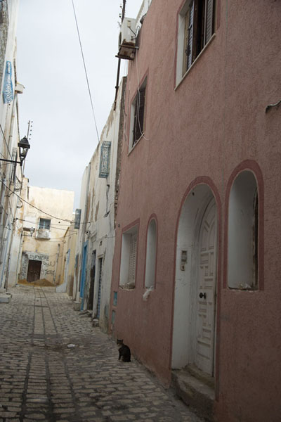 One of the many narrow cobble-stone streets of the old medina of Sousse | Sousse medina | Tunisie