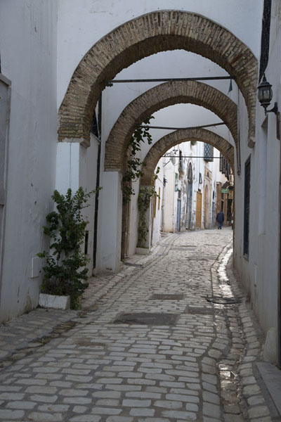 Picture of Tunis medina (Tunisia): Cobblestone street with arches in the medina of Tunis