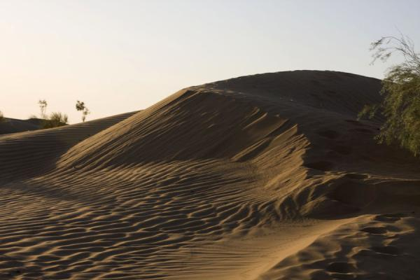 Picture of Darvaza gas crater (Turkmenistan): Sanddunes in the late afternoon in the vicinity of Darvaza gas crater
