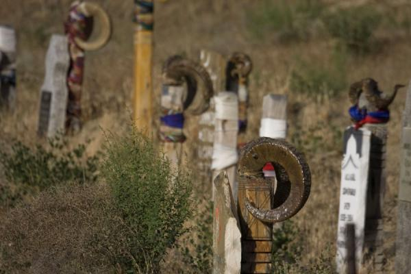 Picture of Nokhur (Turkmenistan): Tombstones with horns in the cemetery of Nokhur