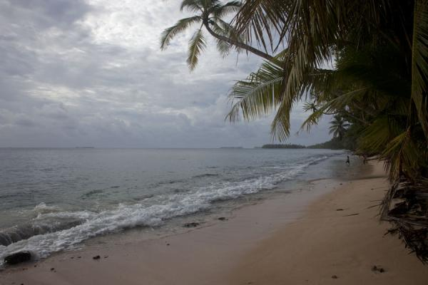 Picture of Fongafale islet (Tuvalu): Stretch of beach on Fongafale