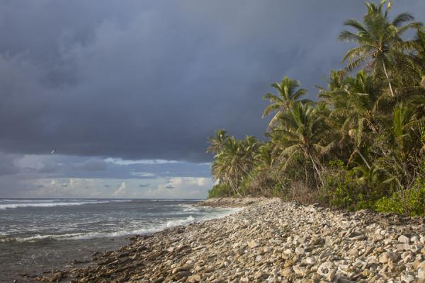 Foto van The coral-studded beach on the eastern side of Funafala isletFunafala - Tuvalu