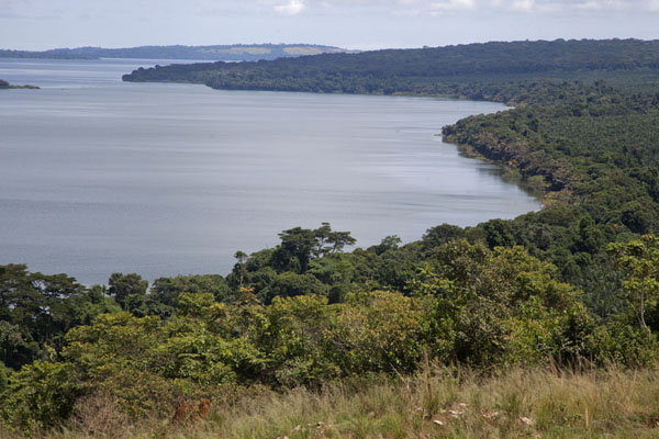 View over the southeastern coastline of Buggala Island | Buggala Ssese Island | Uganda