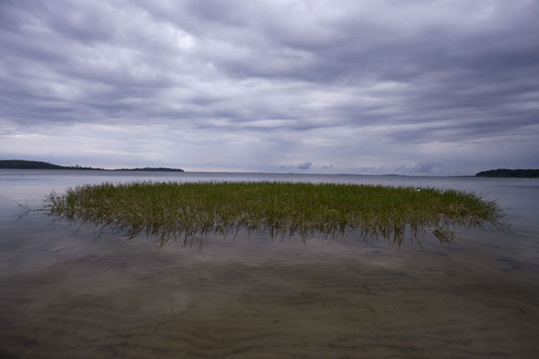 Picture of Buggala Ssese Island (Uganda): Grassy islet under a cloudy sky in the early morning at Lutoboka Bay