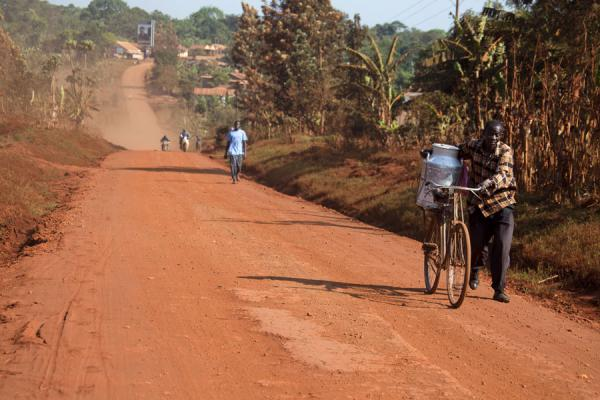 Man pushing his bicycle with heavy load up a dusty road near Bujagali | Jinja | Uganda