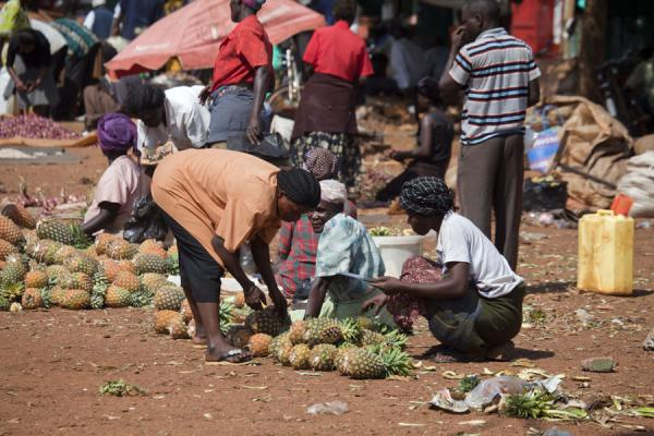 Foto de Women selling pineapples on a market outside JinjaJinja - Uganda