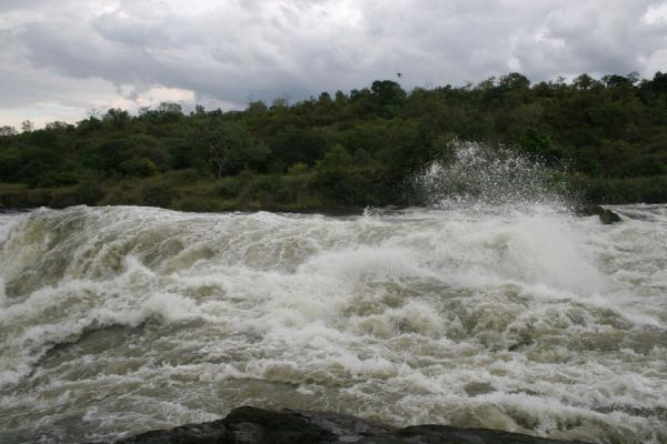 Picture of Murchison Falls (Uganda): Murchison Falls: water rushing towards the narrow gap at the top of the falls
