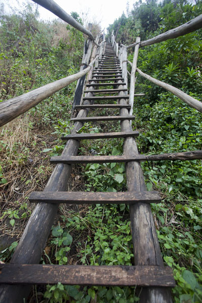 Rickety ladder leading down into the canyon of the third waterfall | Chutes de Sipi | Uganda