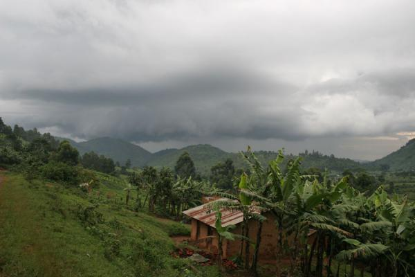 Picture of Uganda Light (Uganda): House in valley under grey skies near Bwindi