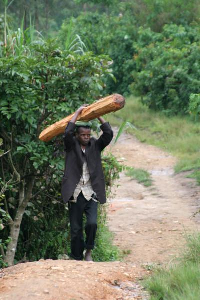 Man carrying a piece of wood | Uganda people | Uganda