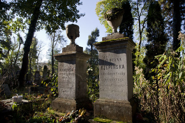 Picture of Row of old tombstones at Lychakiv cemetery