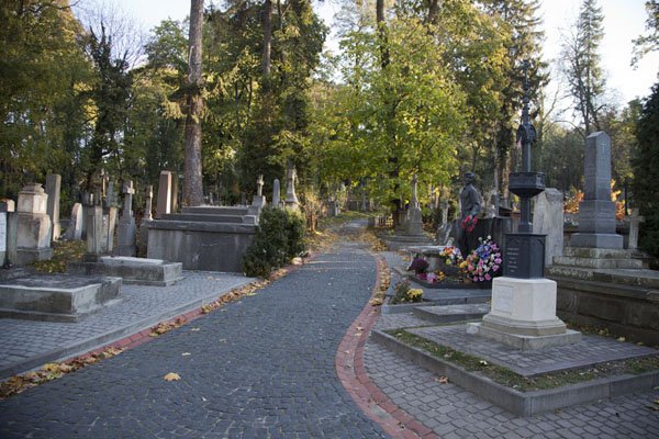 Picture of One of the main lanes in the cemetery - Ukraine - Europe