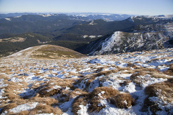 Picture of View towards the east from the flanks of Hoverla Mountain
