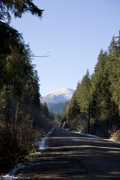 Picture of Mount Hoverla looming over the road to Zaroslyak