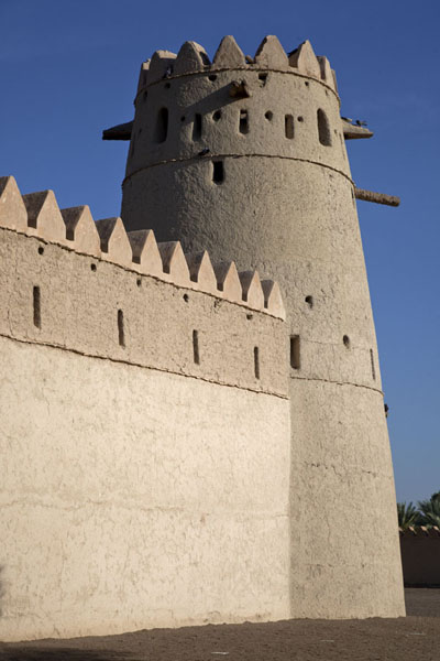 Picture of Al Jahili fort (United Arab Emirates): One of the corners of the fort with circular watchtower